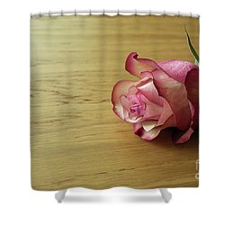 Still Life, Macro Photo Of Pink Rose Flower Shower Curtain by Pixelshoot Photography