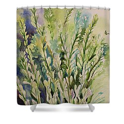 Still Life Of Tuberose Flowers Shower Curtain by Geeta Biswas