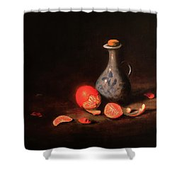 Still Life With A Little Dutch Jug Shower Curtain by Barry Williamson