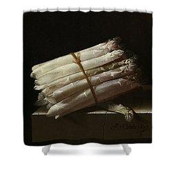 Still Life With Asparagus, 1697 Shower Curtain