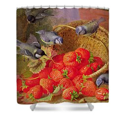 Still Life With Strawberries And Bluetits Shower Curtain by Eloise Harriet Stannard