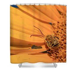 Shower Curtain featuring the photograph Still Sleeping by Chris Berry