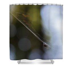 Still Vibration Shower Curtain by Rhys Arithson