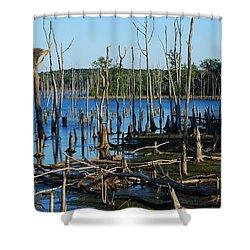 Still Wood - Manasquan Reservoir Shower Curtain