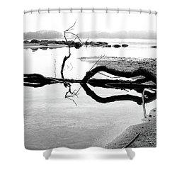 Stillness Shower Curtain by Karen Stahlros