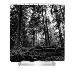 Stillpoint Shower Curtain
