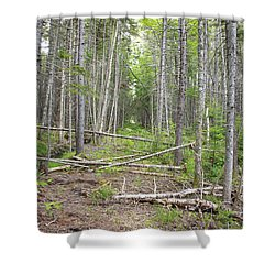 Stillwater Junction - White Mountains New Hampshire  Shower Curtain by Erin Paul Donovan