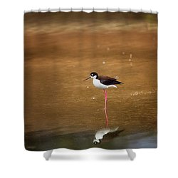 Stilt And Reflection Shower Curtain