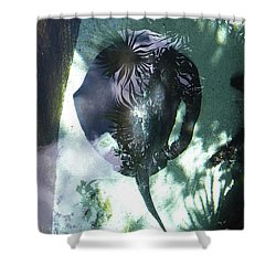 Shower Curtain featuring the photograph Stingray Swim V by Francesca Mackenney
