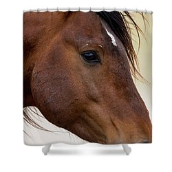 Eye To The Soul Shower Curtain
