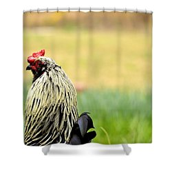 Stink Eye Shower Curtain