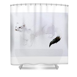 Stoat Watercolor Shower Curtain