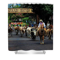 Stockyards Cattle Drive Shower Curtain by David and Carol Kelly