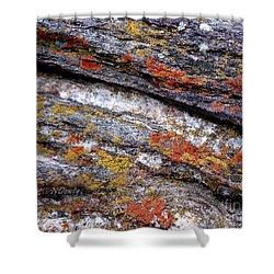 Stone And Lichen Shower Curtain