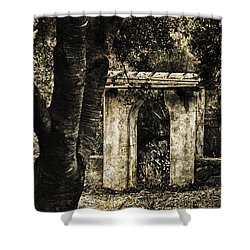 Shower Curtain featuring the photograph Stone Archway In The Forest by Joseph Hollingsworth