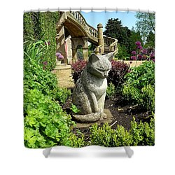 Stone Cat Shower Curtain by Patrick J Murphy