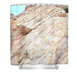 Shower Curtain featuring the photograph Stone Feet In Valley Of Fire by Ray Mathis