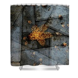 Stone Life Shower Curtain