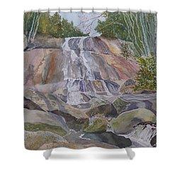 Stone Mountain Falls April 2013 Shower Curtain