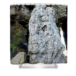 Shower Curtain featuring the photograph Stone Over Time by Francesca Mackenney