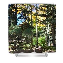 Stone Park Trails Shower Curtain