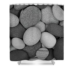 Stone Soup Black And White Shower Curtain