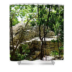 Shower Curtain featuring the photograph Stone Steps In The Jungle by Francesca Mackenney