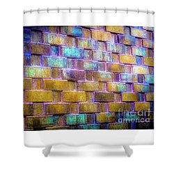 Brick Wall In Abstract 499 Shower Curtain
