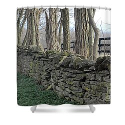 Stone Wall Shower Curtain by Linda Mesibov
