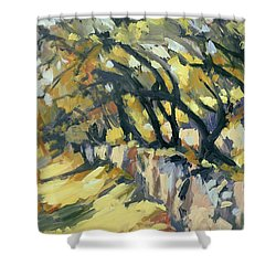 Stone Wall Olive Grove Terrace Shower Curtain