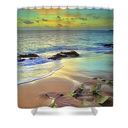 Shower Curtain featuring the photograph Stones In The Sand At Sunset by Tara Turner