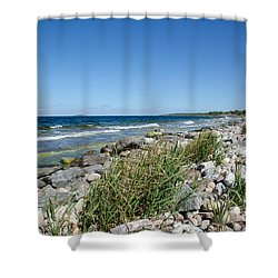 Shower Curtain featuring the photograph Stony Bay With Green Reeds by Kennerth and Birgitta Kullman