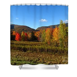 Stony Clove Shower Curtain