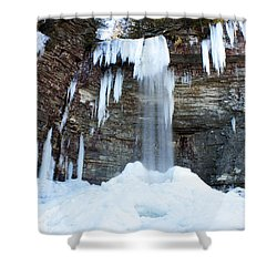 Stony Kill Falls In February #1 Shower Curtain