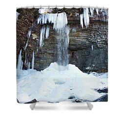 Stony Kill Falls In February #2 Shower Curtain