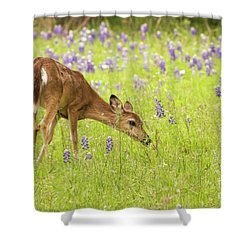 Stop And Smell The Bluebonnets. Shower Curtain