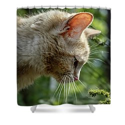 Stop And Smell The Flowers 9433a Shower Curtain
