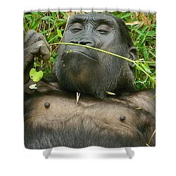 Stop And Smell The Grass Shower Curtain by Emmy Marie Vickers