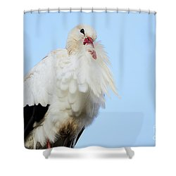 Shower Curtain featuring the photograph Storck Closeup by Nick Biemans