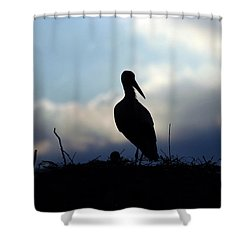 Stork In Evening Light Shower Curtain