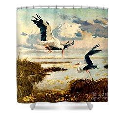 Storks II Shower Curtain by Henryk Gorecki