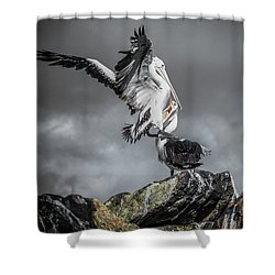 Storm Birds Shower Curtain