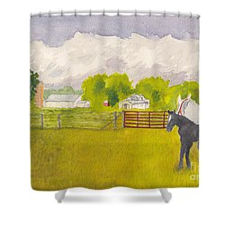 Storm Clouds Mare And Colt At Sunrise Shower Curtain