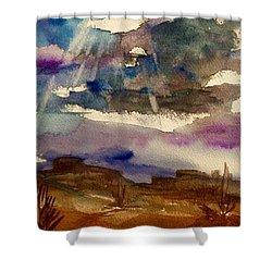 Storm Clouds Over The Desert Shower Curtain by Ellen Levinson