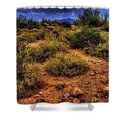 Storm Clouds Over The Sonoran Desert In Spring Shower Curtain