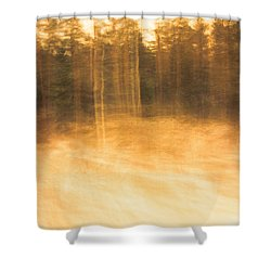 Storm In The Forest Shower Curtain
