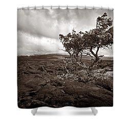 Storm Moving In - Sepia Shower Curtain by Christopher Holmes
