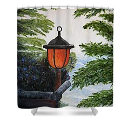 Shower Curtain featuring the painting Storm On Lake Of The Woods by Marilyn  McNish