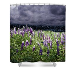 Storm Over Lupine Shower Curtain