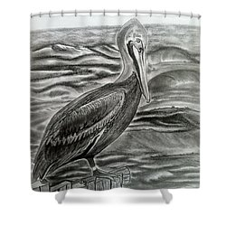 Storm Watcher Shower Curtain